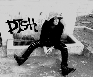 dish2014.jpg