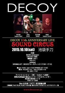 2015_1010_decoy.jpg