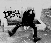 dish201411.jpg
