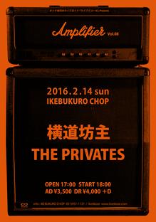 amp20160214f.jpg